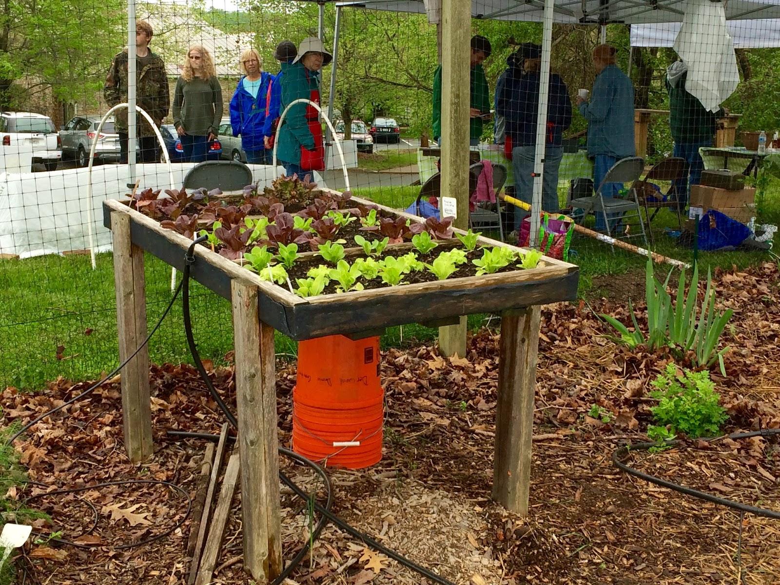 Greenish Thumb: The Master Gardener Demonstration Gardens