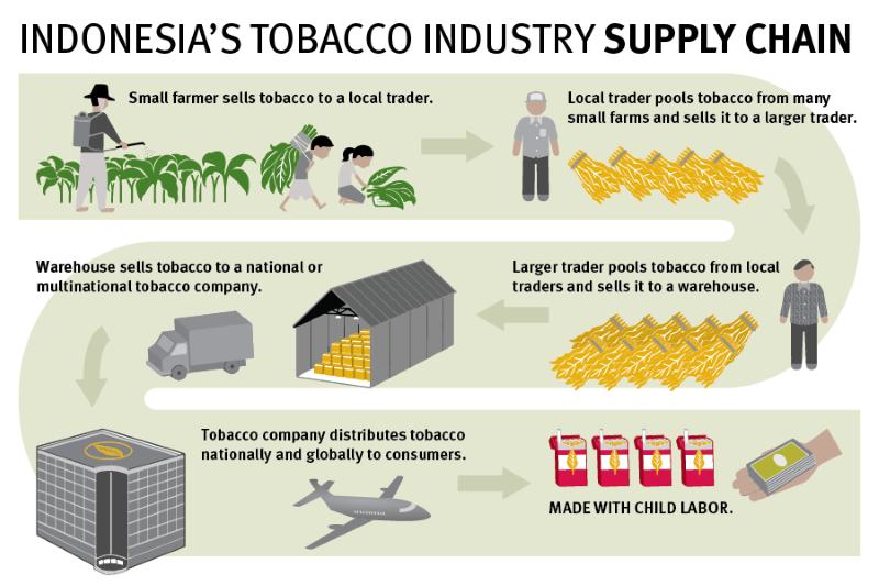 Infográfico do Tabaco na Indonésia