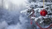 Dopo aver addobbato l'albero, aver fatto il presepe, abbellito la vostra casa, non vi resta che dare un tocco natalizio anche al vostro computer. 35 Sfondi Per Il Desktop Dedicati Al Natale Navigaweb Net