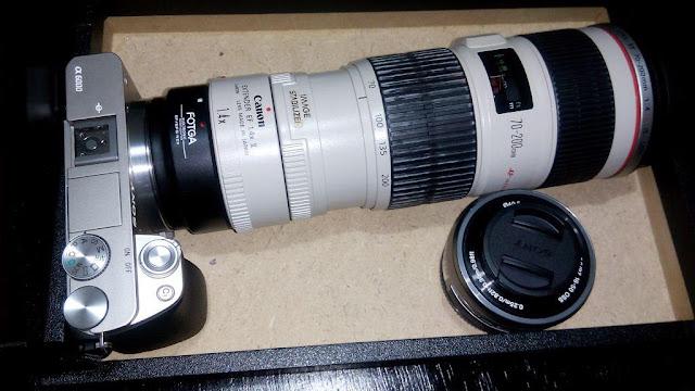 Lensa Canon EF Pada Sony A6000 dengan E-Mount Menggunakan Adapter Fotga