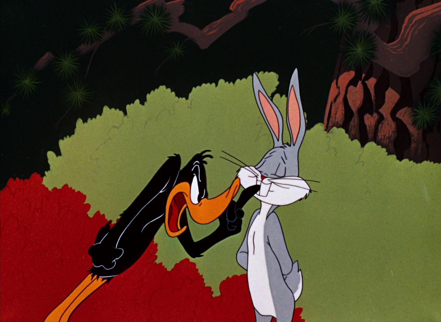 Looney Tunes Rabbit Seasoning