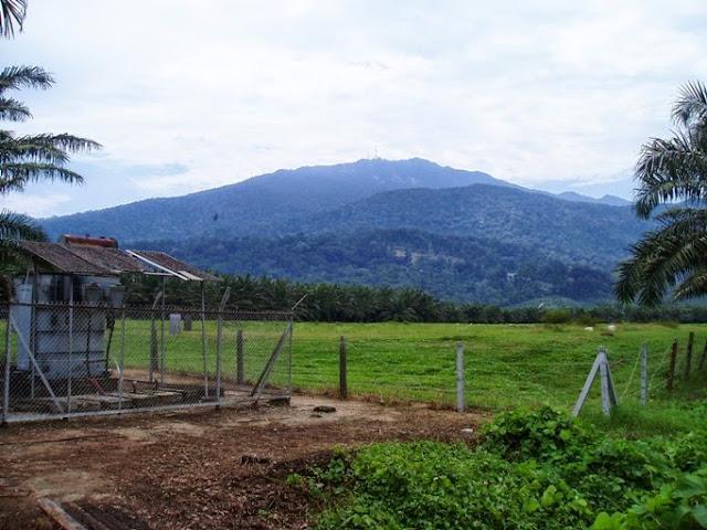 Gunung Ledang Johor Malaysia