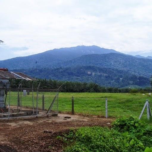 Belajar Memelihara Gunung dari Negeri Tetangga
