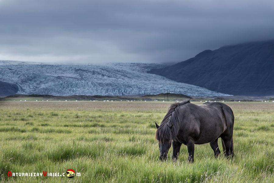 Glaciar Flaajokull, Islandia
