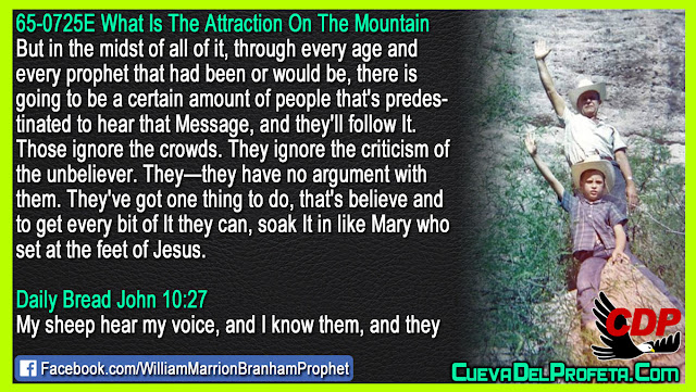 People that is predestinated to hear the Message - William Branham Quotes