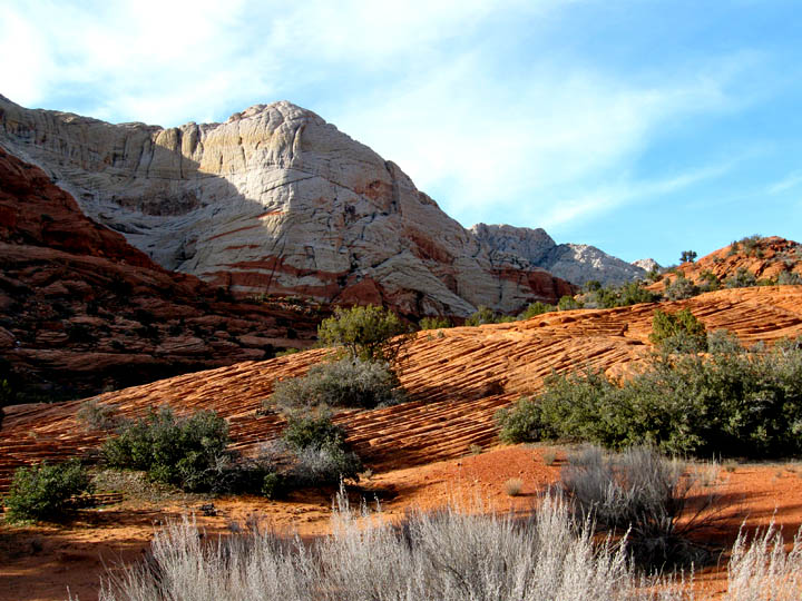 THE DAY HIKER: Snow Canyon to Pine Valley Trails