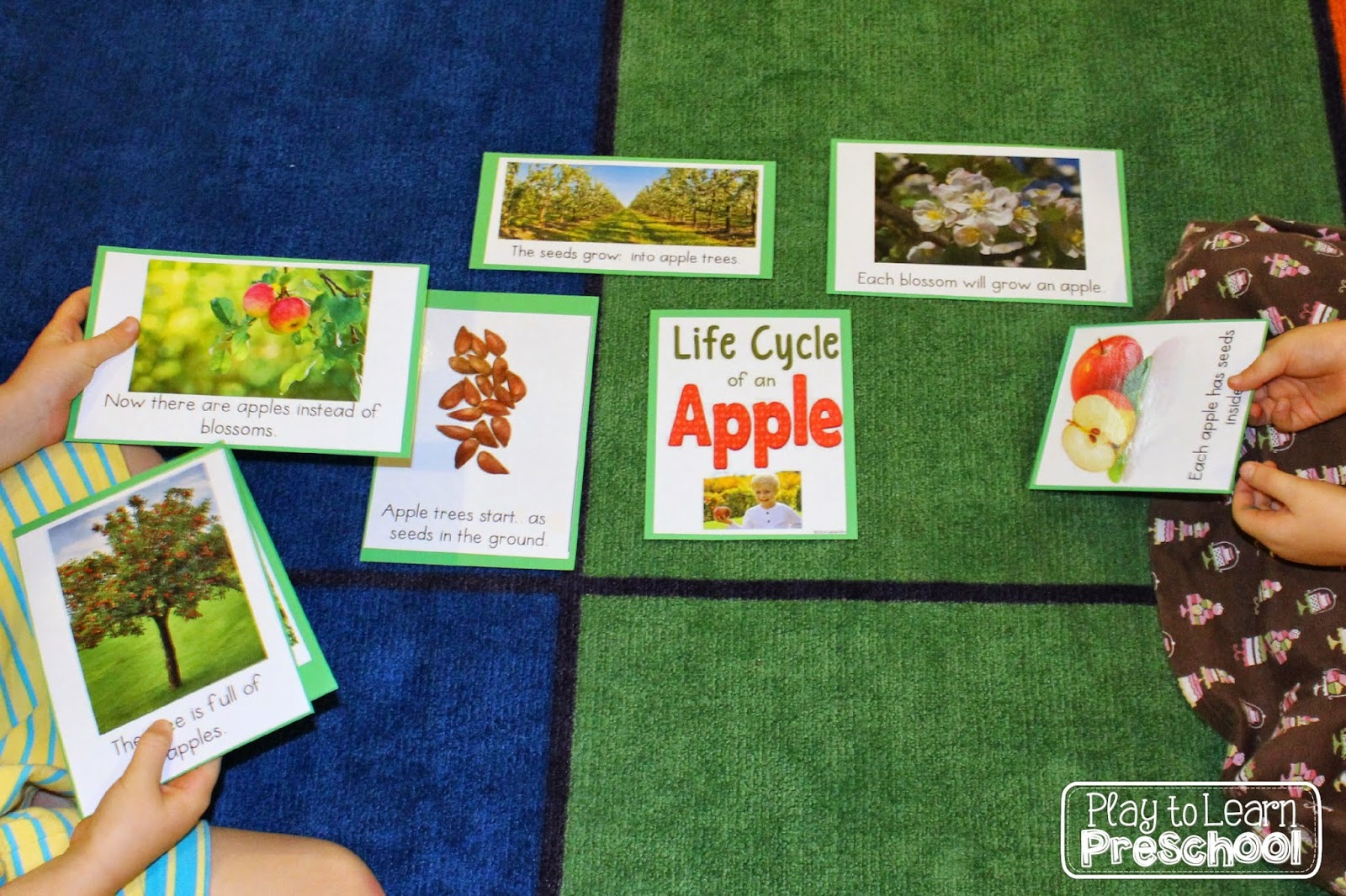 Play To Learn Preschool Apple Circle Time