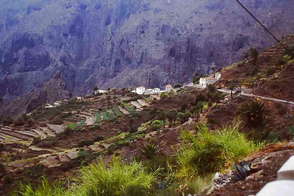 Bananen auf steilen Terrassen vor noch steileren Felswänden © Copyright Monika Fuchs, TravelWorldOnline