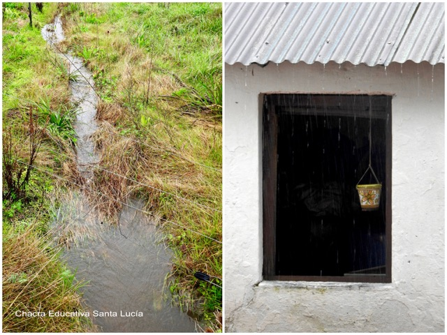 Cañadita de agua de lluvia / Llueve en la chacra - Chacra Educativa Santa Lucía