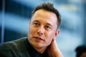 Panneli solari per tetto | Elon Musk progetta