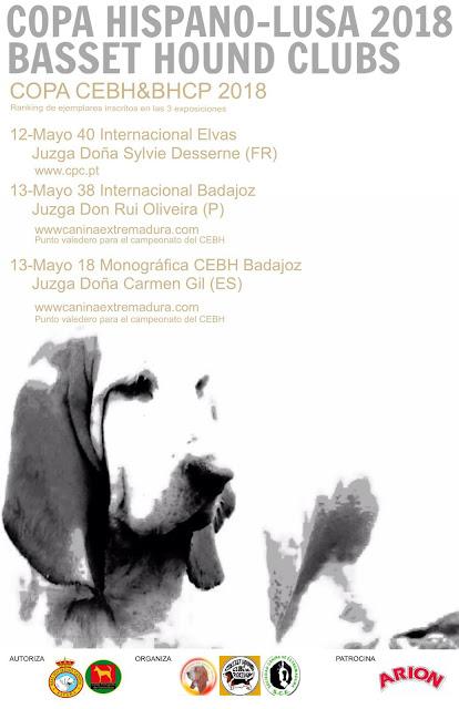 XVIII Exposición Monográfica sin CAC de Badajoz 9