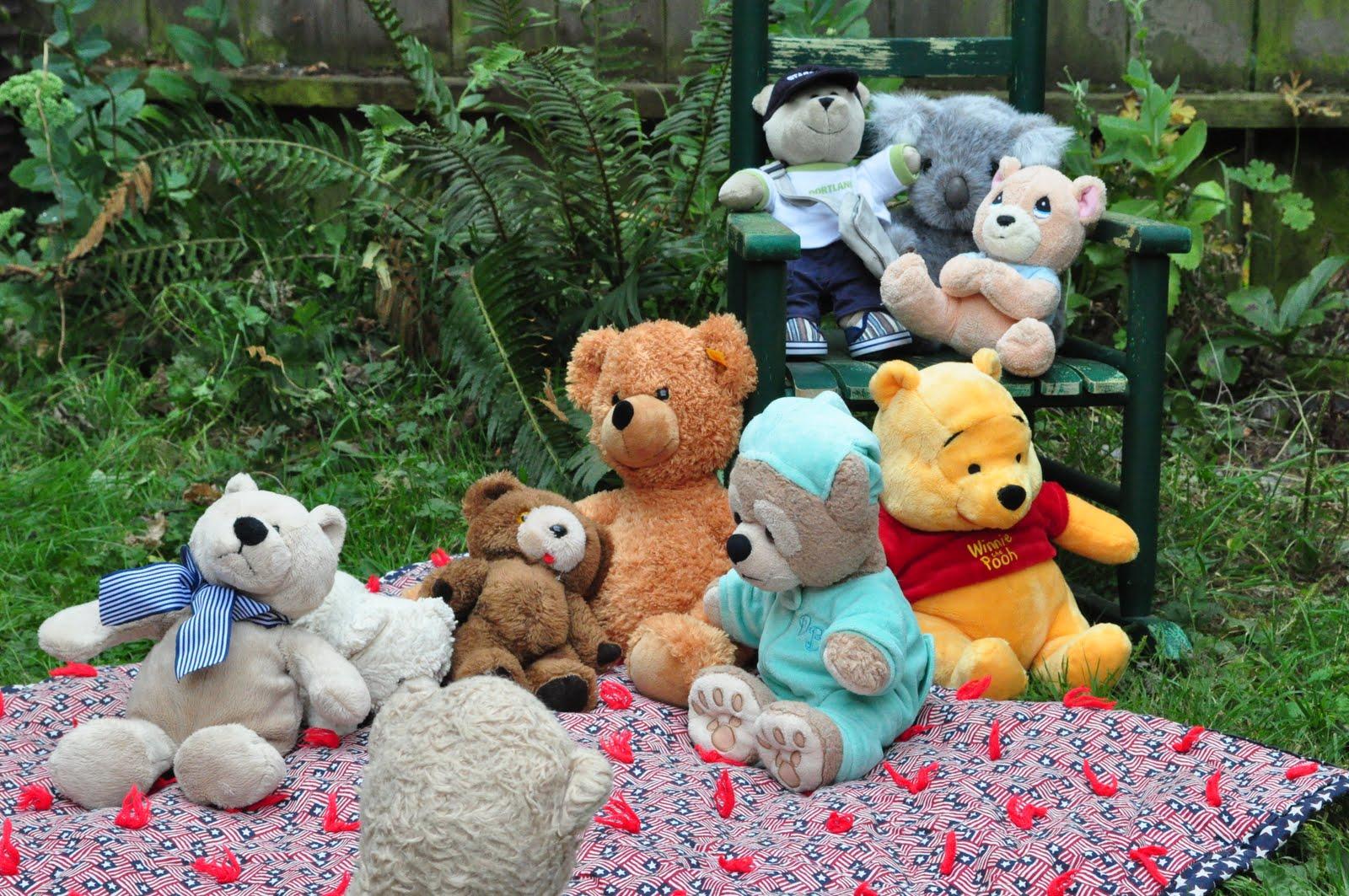 Stream Of Consciousness Teddy Bear Picnic