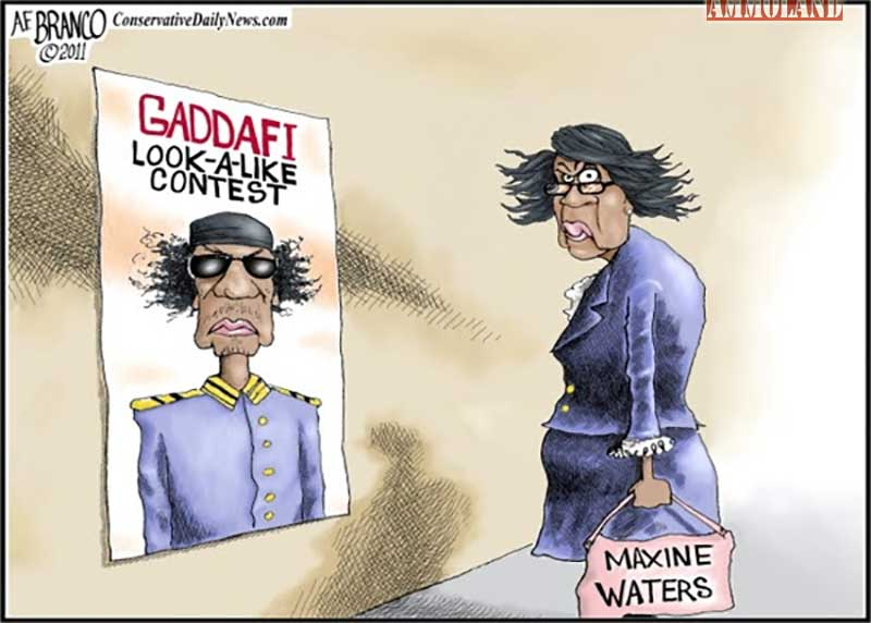 Image result for maxine water cartoons