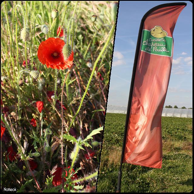 drapeau d'orientation de la ferme de Servigny