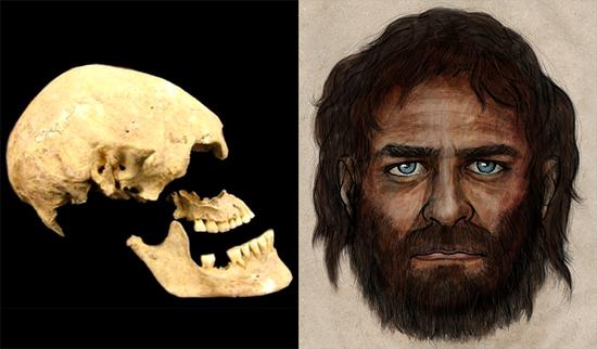 Ancestral humano