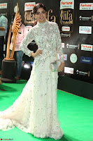 Poonam Kaur in Beautiful Floor Length Gown at IIFA Utsavam Awards 2017  Day 2  Exclusive 09.JPG