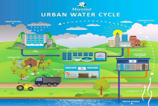 Urban Water Cycle Maynilad