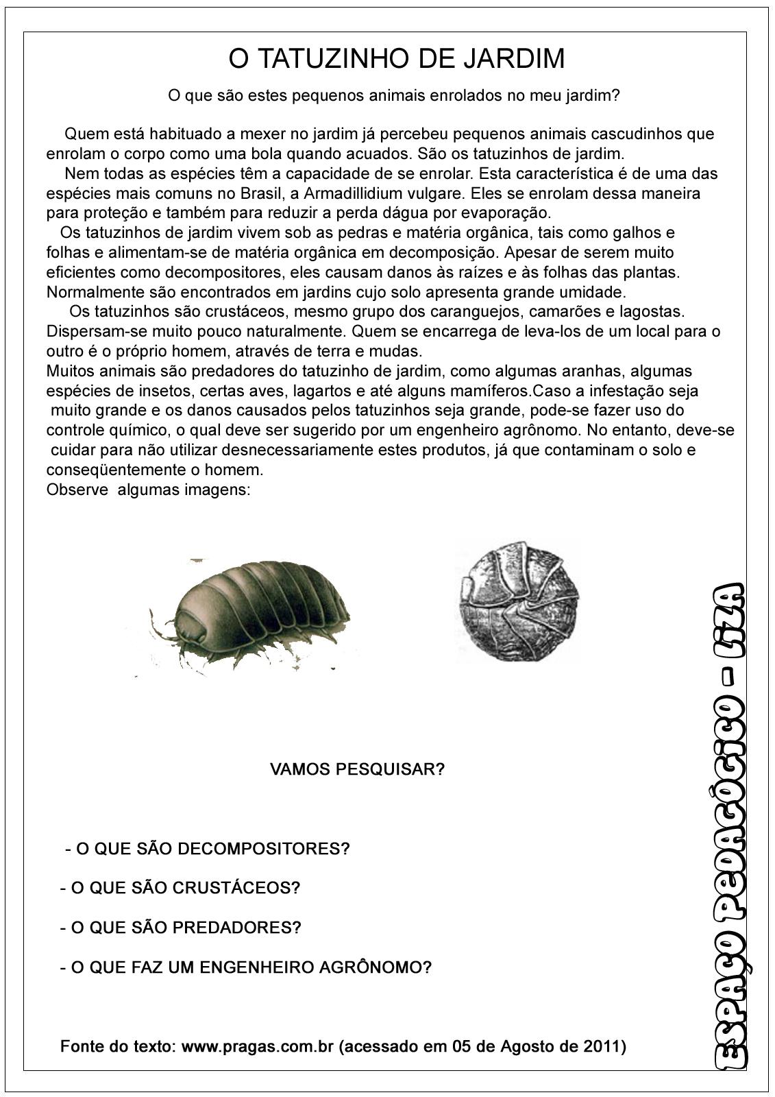 texto e atividades sobre tatuzinho de jardim ou tatu bola
