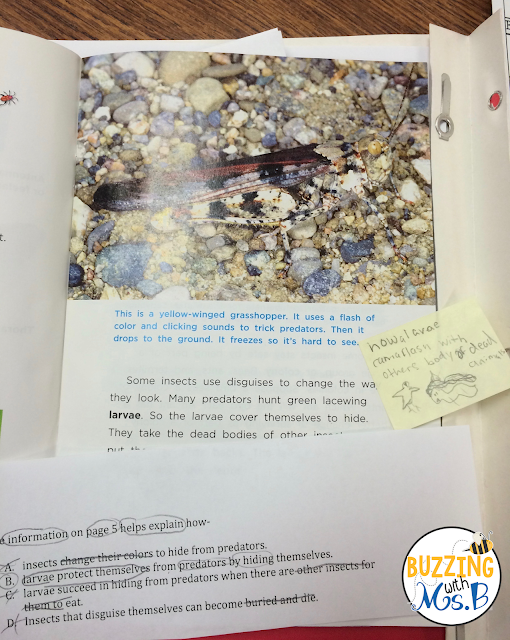 Looking for tips on how to get your kids to apply test-taking strategies? Even better, struggling to fit in guided reading when you're barely getting through your day? Here's my #1 tip on bridging guided reading to test prep in upper elementary. This post explains how to use a purpose question to have students apply their reading comprehension strategy that you're teaching them in guided reading! Don't give up on guided reading in test prep season before you read this post!