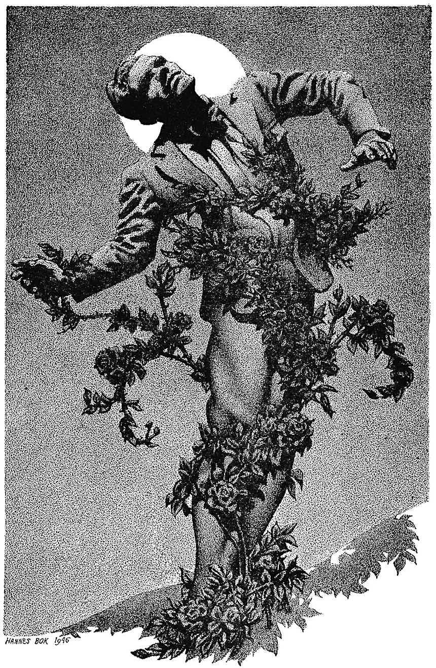 Hannes Bok 1946, curse