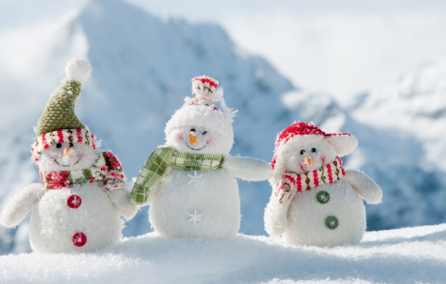Steps To Having An Old Fashioned Christmas Holiday