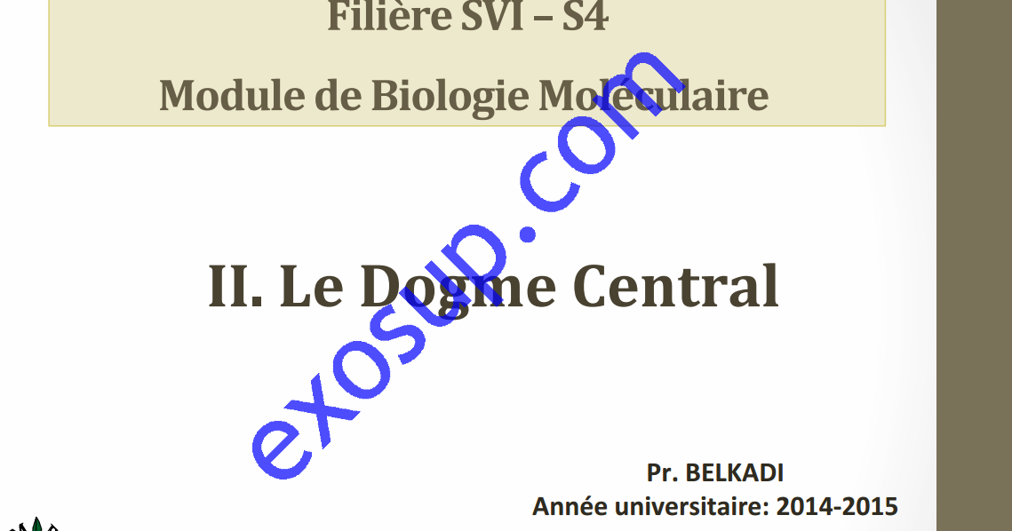 Cours Biologie Mol U00e9culaire Svi S5 Fsr   Le Dogme Central