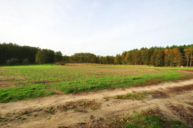 pole, na którym znajdowało się średniowieczne miasto Dzwonowo