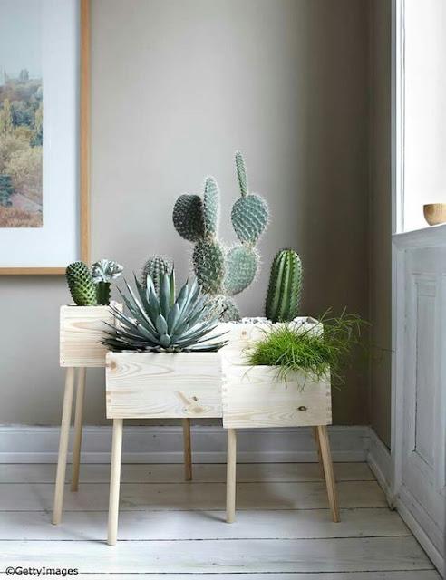 Ideias decorativas, coisas que estou amando. Blog Achados de Decoração