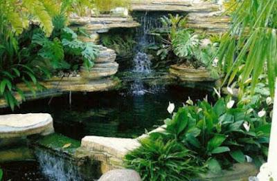 Desain kolam ikan minimalis di lahan sempit, contoh kolam ikan terbaik