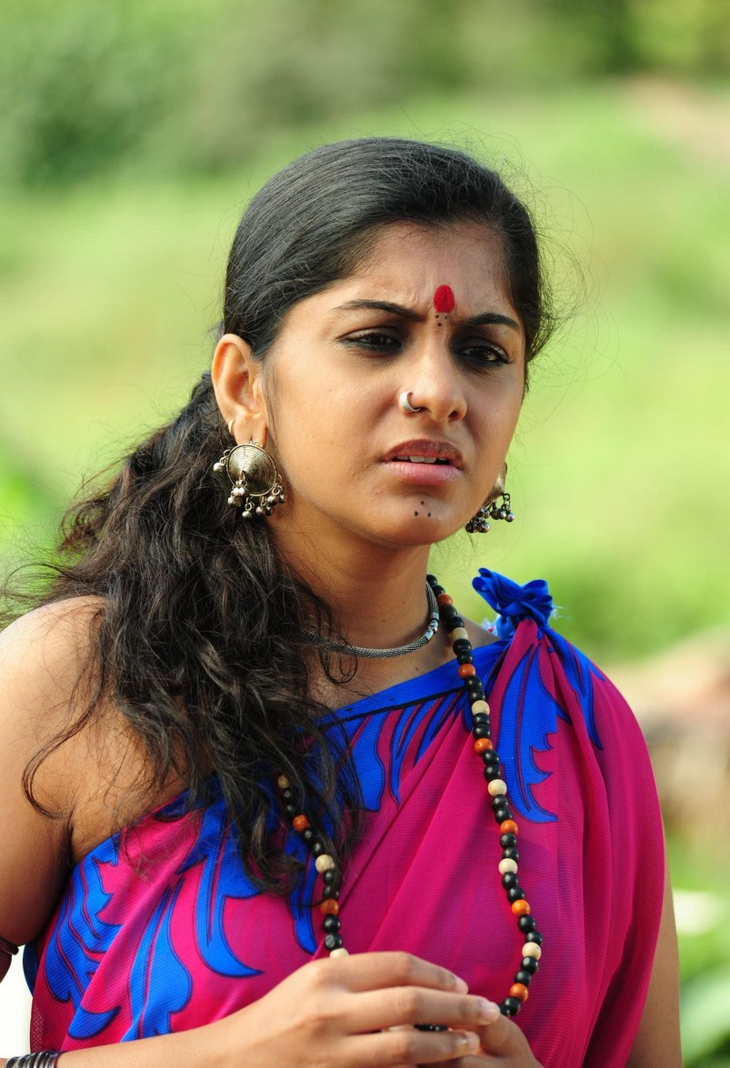 Actress Meera Nandan Hot Photos In Pink Saree