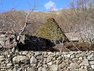 pastoreo en el valle del jerte