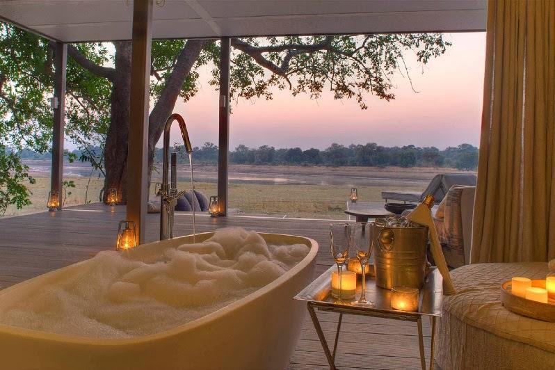 Safari Style Elegantly Simplistic 9