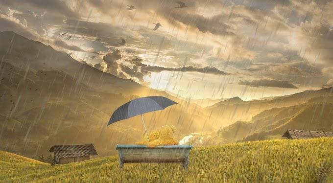 [Cerpen] Aku dan Pemburu Hujan
