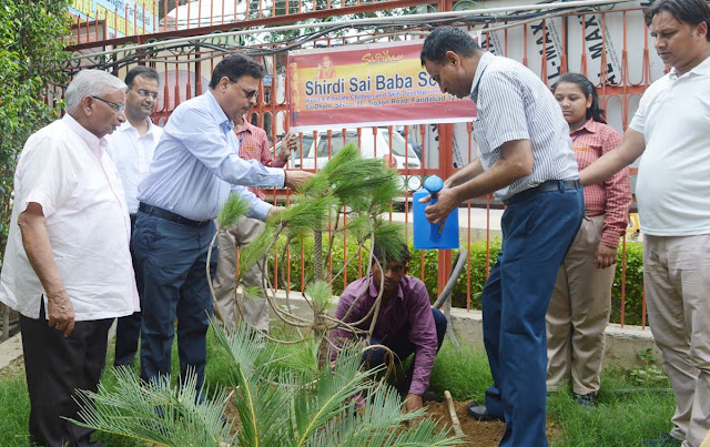 Faridabad Civil Surgeon Dr BK Rajaura planted in Saidham