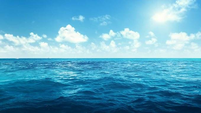 Calentamiento de los océanos  |  Inversión en whisky