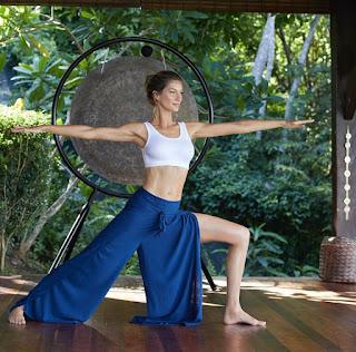 livro yoga