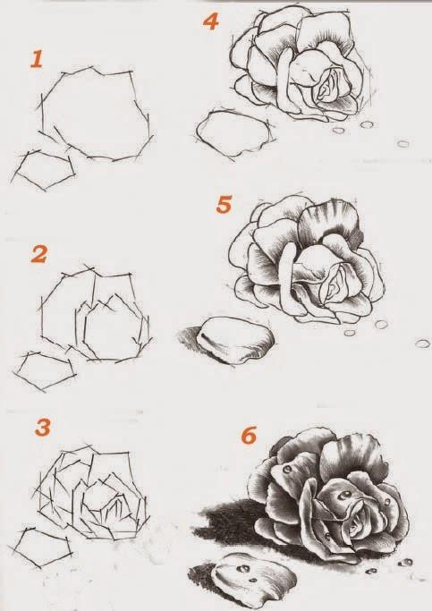 tuto dessin comment dessiner une rose tapes par tapes. Black Bedroom Furniture Sets. Home Design Ideas
