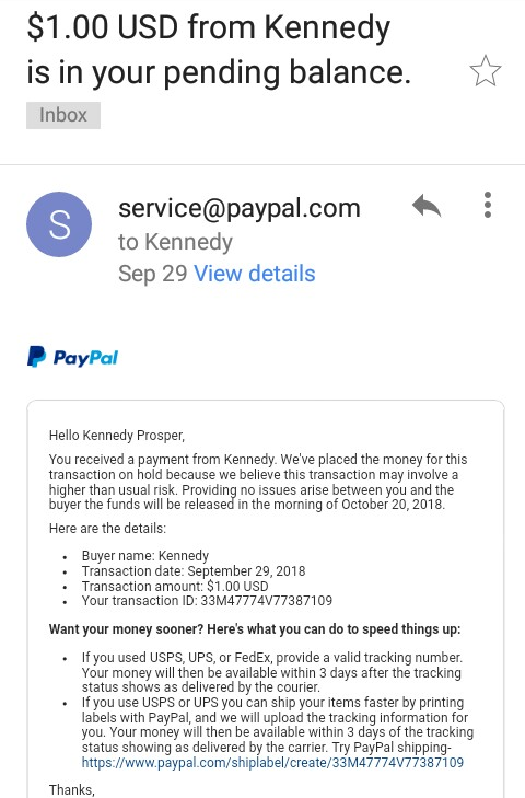 PayPal temporary hold on Payment-21 Days pending Balance