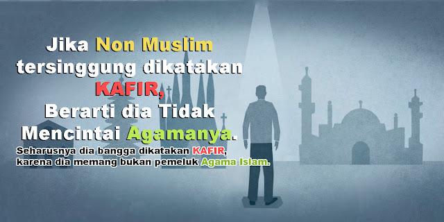 Islamopobhia Datang dari Dalam, Term Alquran Dipersoalkan