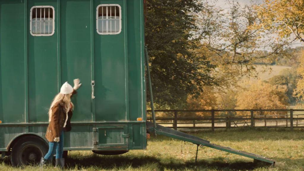 Pubblicità Amazon con cavalli e pony ''solitario'' con ragazza che lo adotta - Novembre 2016