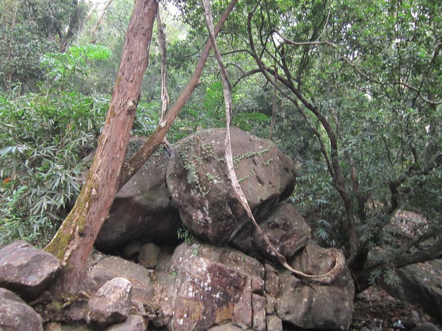 Golden Valley Thiruvananthapuram
