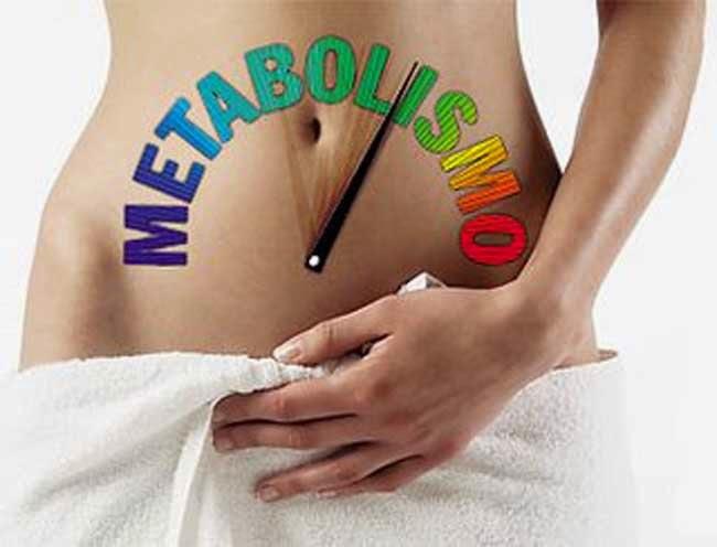 Como puedo acelerar mi metabolismo para quemar grasa y - Como puedo adelgazar ...
