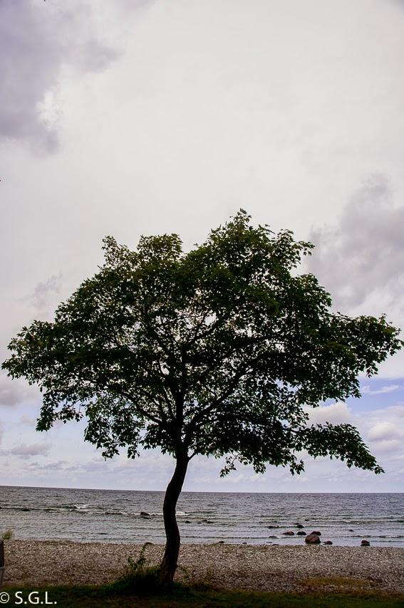 Visby, Gotland, Suecia. Panoramica