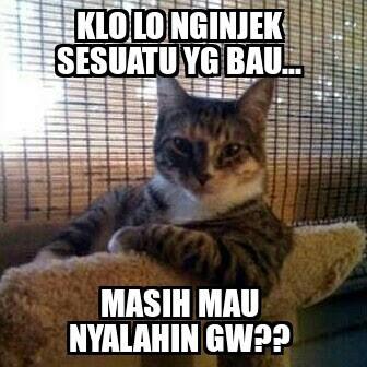 10 Meme 'Salah Gw Apa' yang Kocaknya Bikin Ngakak Sampe Mules