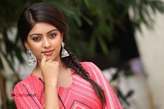 Actress Anu Emmanuel Pictures at Majnu Success Meet  0129