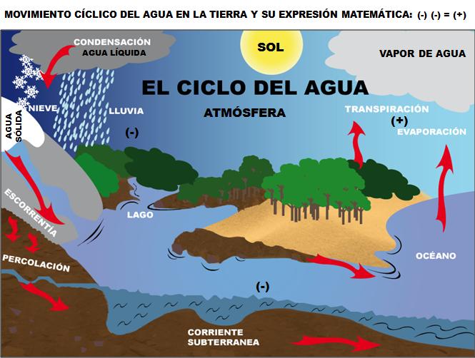 Fundamentos De La Ciencia Movimiento Cíclico Del Agua Y Su Disponibilidad En La Tierra