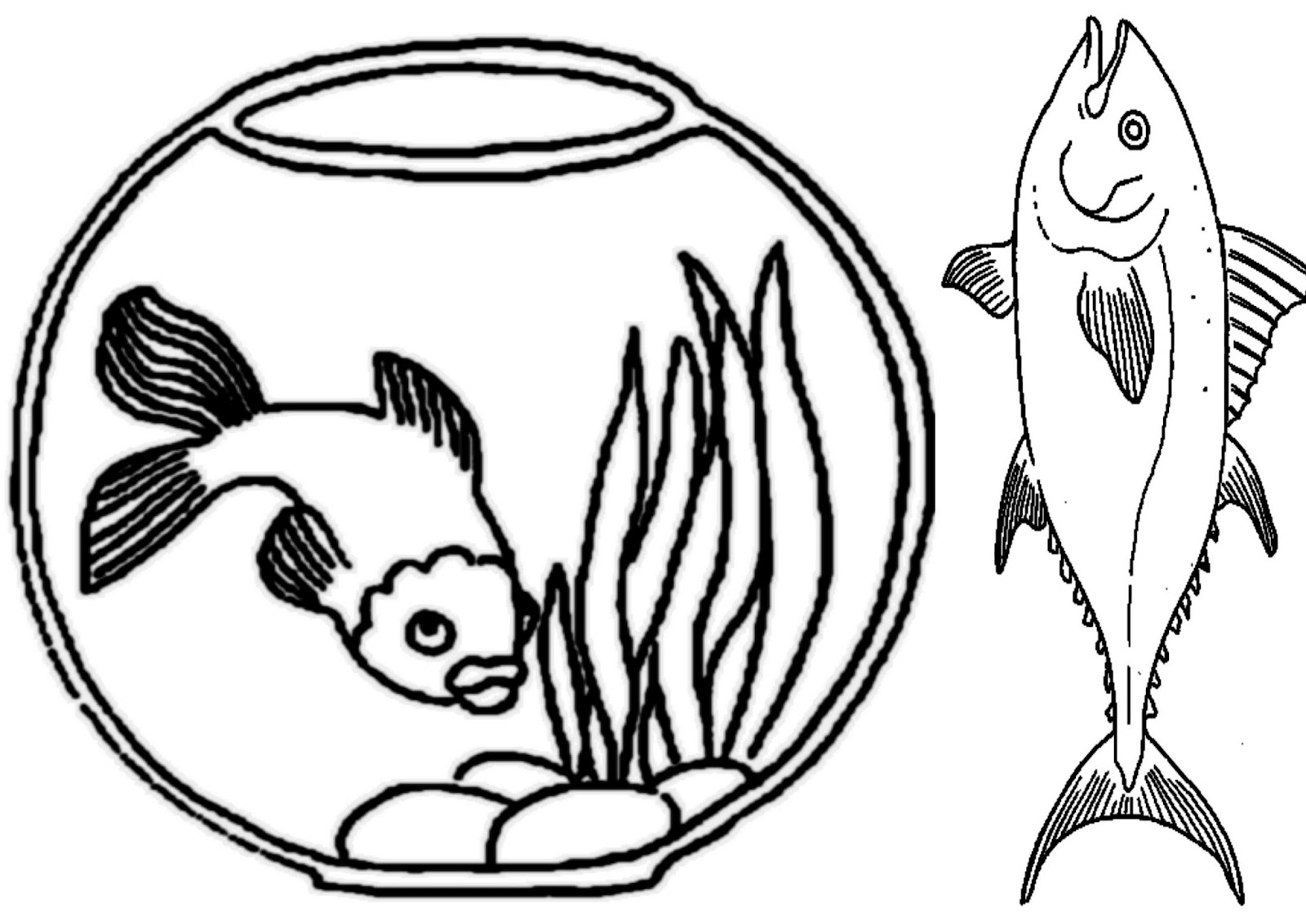 Desenho De Peixe E Aquario Para Colorir Desenhos Para Colorir