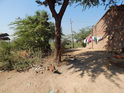 Life in villages in India: Case Study of Juda and Jambuthal, Sanand, Ahmedabad, Gujarat