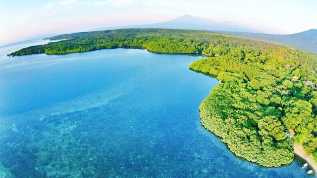 Baluran National Park Java