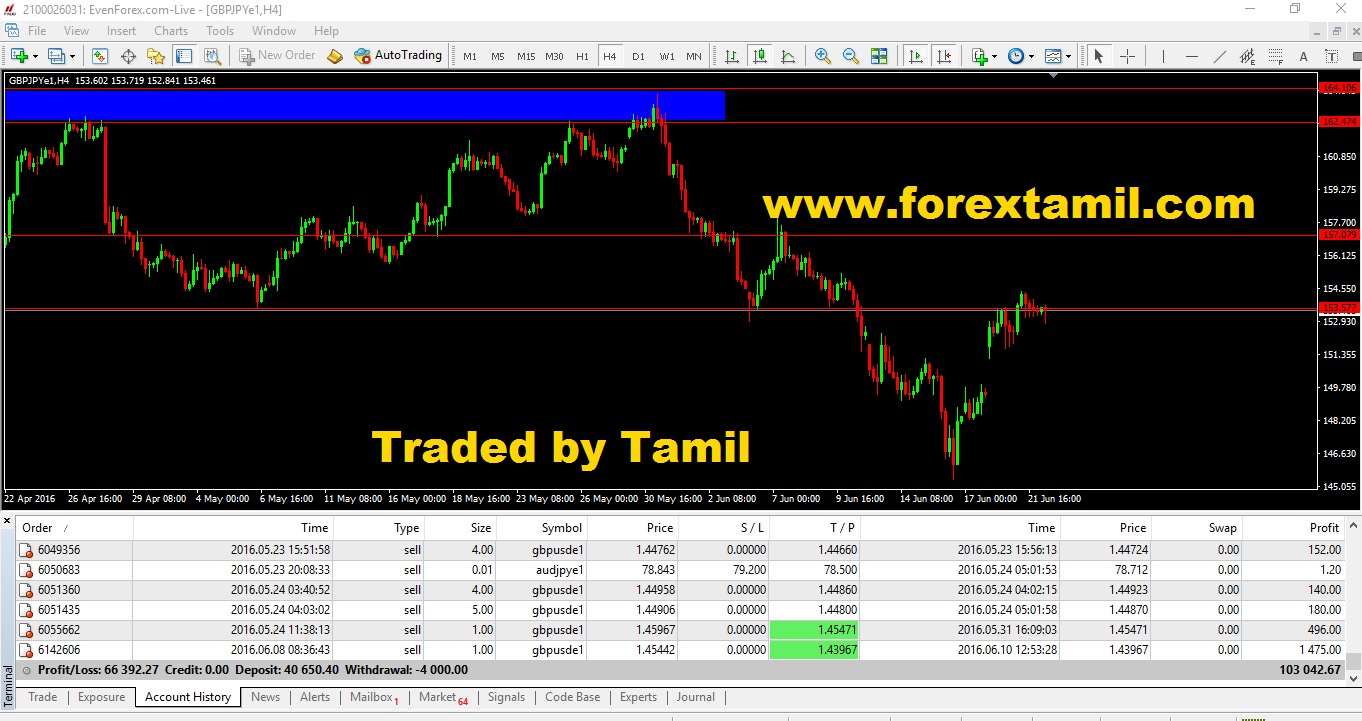 Free Forex Training India Mumbai Professional Trader Course Online Trading Academy Learn How To Trade In Education